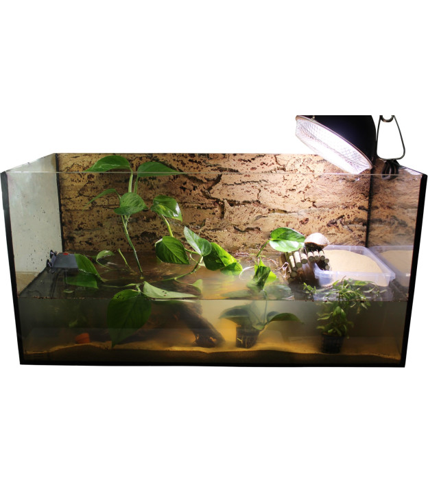 """Standard Aquarium Set 80cm """"Weibchen"""""""