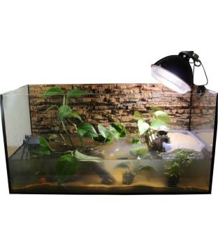"""Premium Aquarium Set 80cm """"Weibchen"""""""