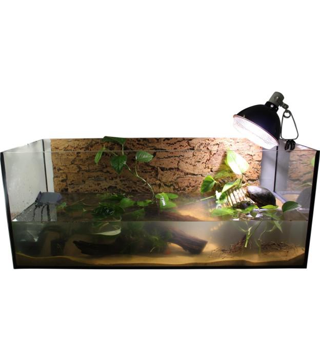 "Standrad Aquarium Set 100cm ""Weibchen"""